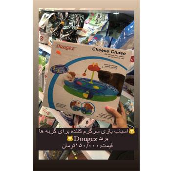 اسباب بازی سرگرم کننده برای گربه ها برند Dougez